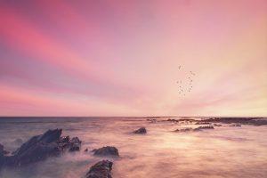 seascape, rocks, sunset